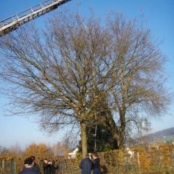Eichmessen Urdorf 2005