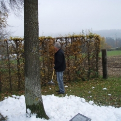 Eichmessen 2009