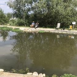 Fischen 2018_4